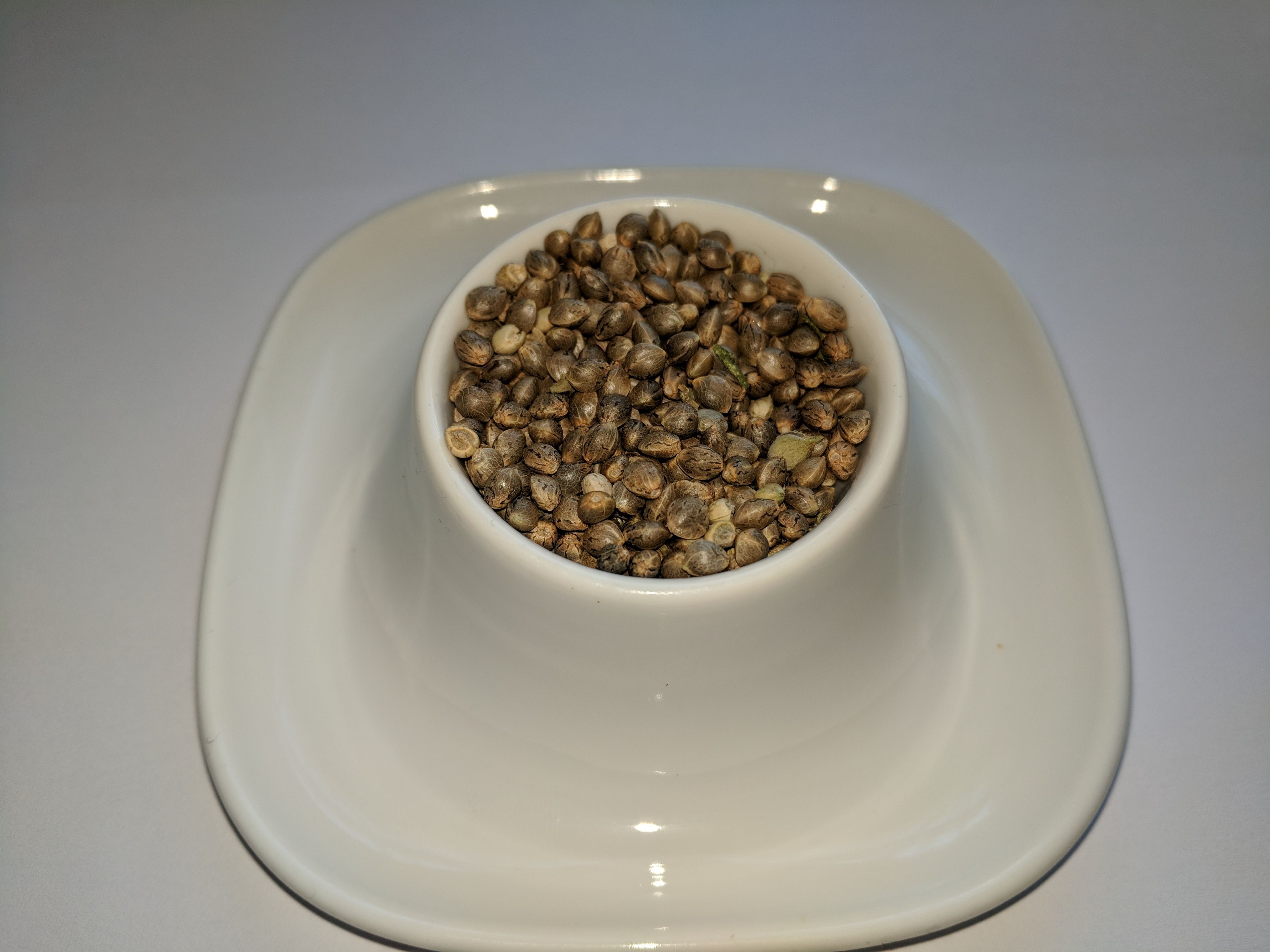 420seedcompetitioneggcup.jpg