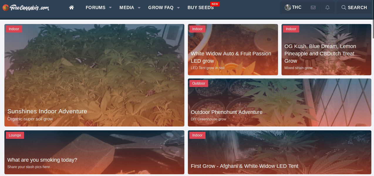 new-forum-page-layout.png