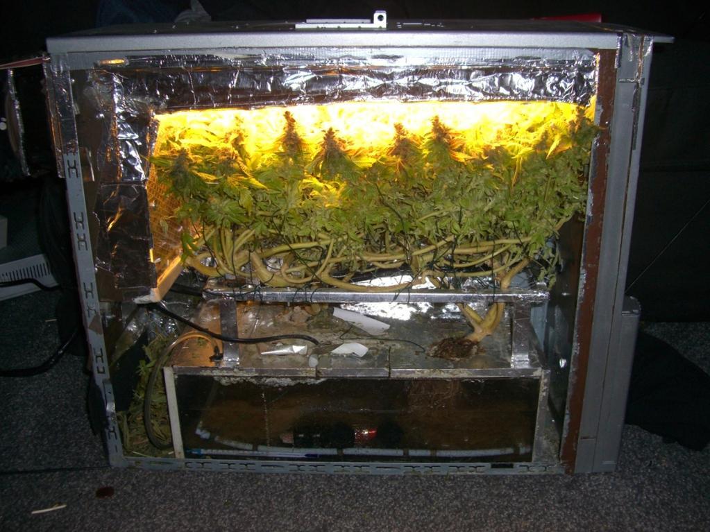 pc-case-grow-stealth-cannabis.jpg