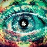 Legal Eyes