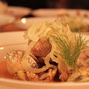 Clams_Plated-1024x640-2
